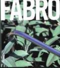 Luciano Fabro. Catalogo della mostra (Napoli, 21 ottobre 2007-7 gennaio 2008). Ediz. illustrata