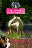 Un cavallo da sogno. Storie di cavalli. 1.