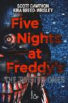Five nights at Freddy's. The twisted ones. 2.