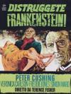 Distruggete Frankenstein