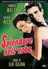 Splendore Nell'Erba